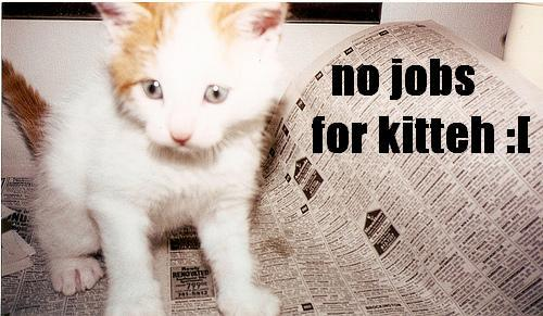 No Jobs For Kitteh!