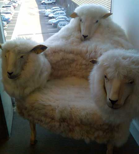 Strange sheep-head chair