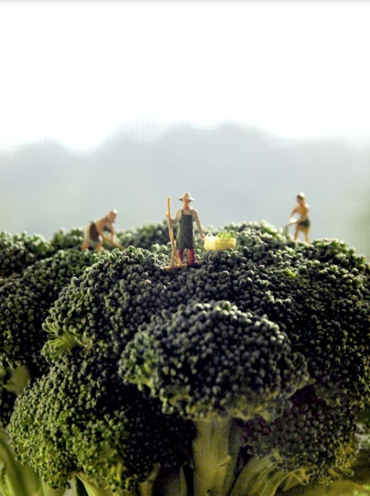 Tiny people on top of broccoli
